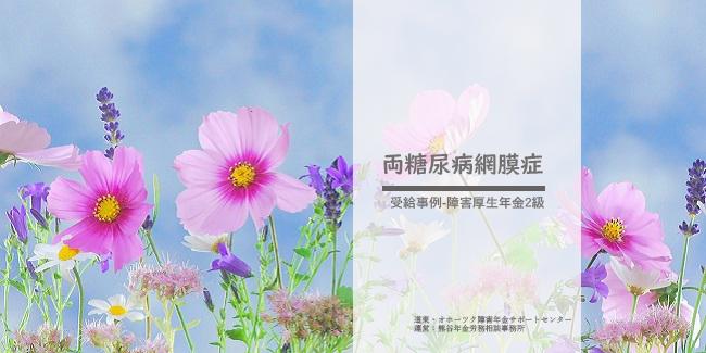 障害年金受給事例両糖尿病網膜症 熊谷年金労務相談事務所